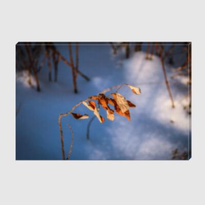 Холст Зима