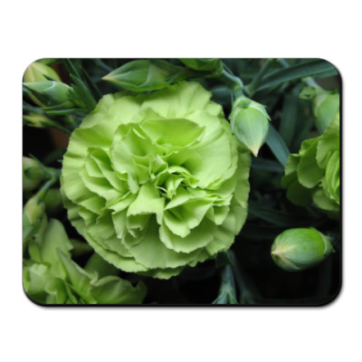 Коврик для мыши Green carnation