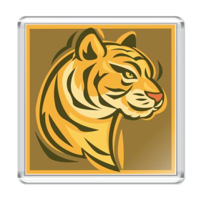 Магнит  Sand tiger