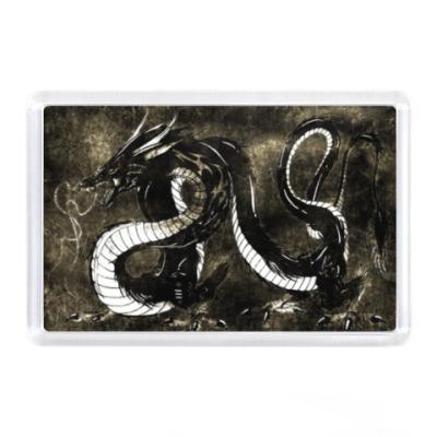 Магнит Черный дракон