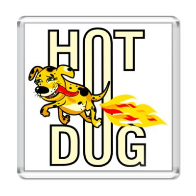 Магнит   hotdog