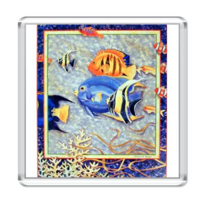 Магнит Рыбы1