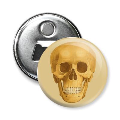 Магнит-открывашка череп