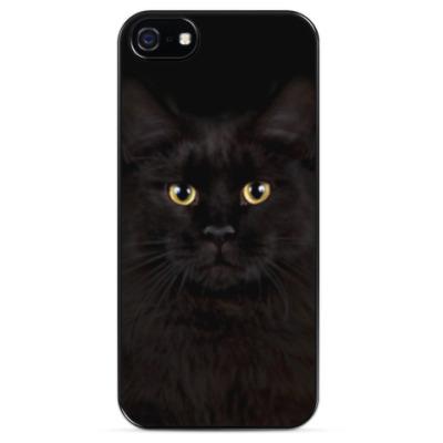 Чехол для iPhone Черный кот
