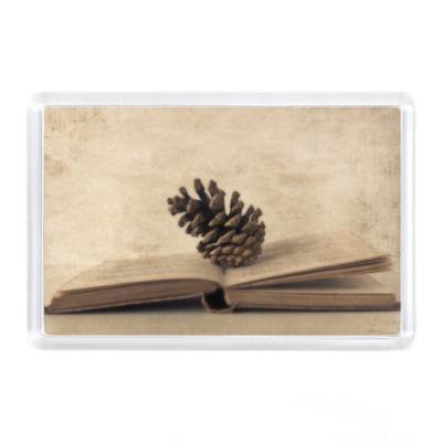 Магнит Книга с шишкой
