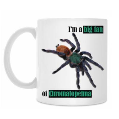 Кружка Chroma