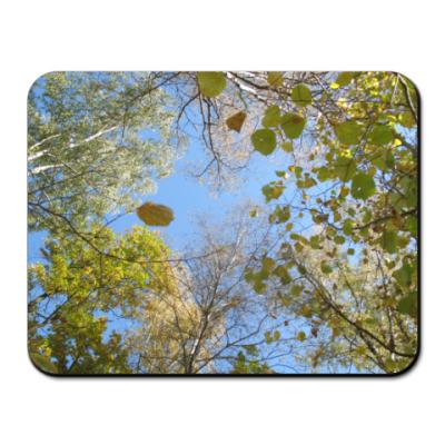 Коврик для мыши Сквозь листву