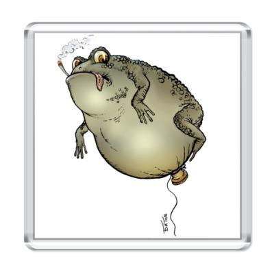 Магнит ToadsFly