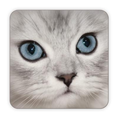 Костер (подставка под кружку)  Кот