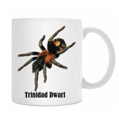 Кружка Elegans Trinidad