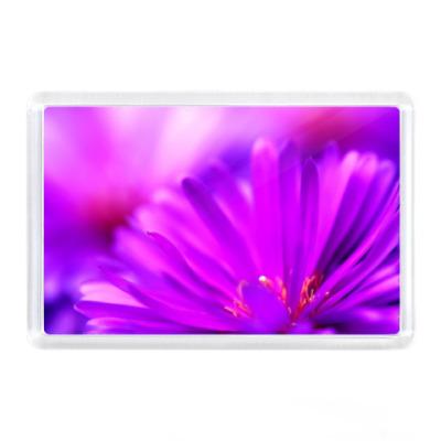 Магнит Фиолетовый Цветок