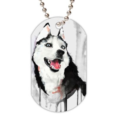 Жетон dog-tag Хаска