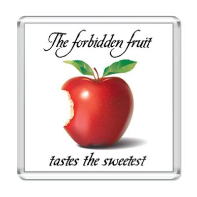 Магнит The forbidden fruit