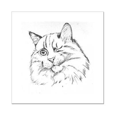 Наклейка (стикер) Хитрый кот