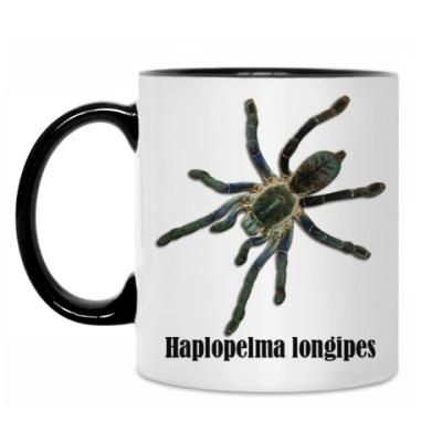 Кружка Longipes