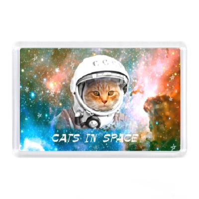 Магнит котейка космонавт