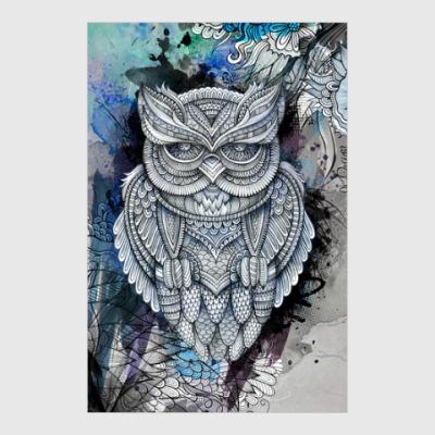 Постер Owl