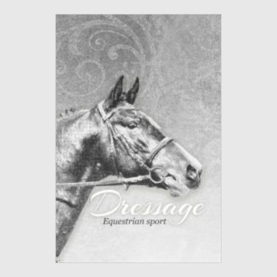 Постер Конный спорт, лошади. Dressage
