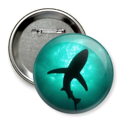 Значок 75мм Акула