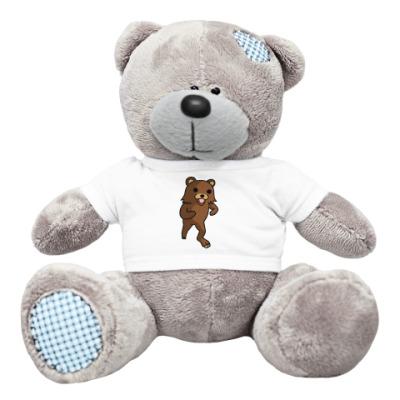 Плюшевый мишка Тедди Мишка pedobear
