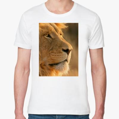 Футболка из органик-хлопка Lion