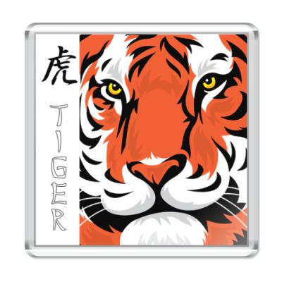 Магнит  Tiger