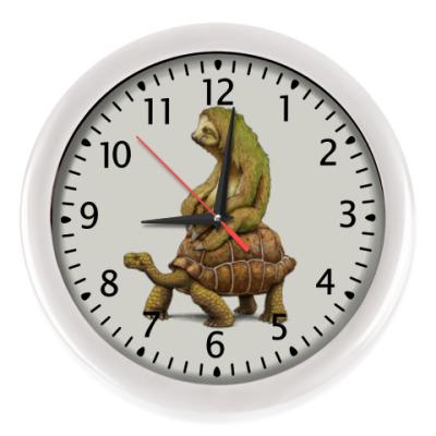 Настенные часы Ленивец на черепахе