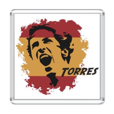 Магнит Торрес