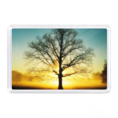 Магнит Дерево жизни