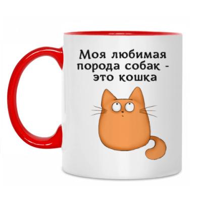 Кружка Обожатель кошек