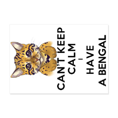 Виниловые наклейки Can't keep calm i have a bengal