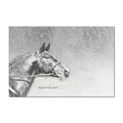 Наклейка (стикер) Конный спорт, лошади. Dressage