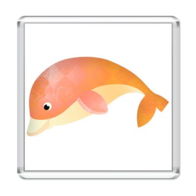 Магнит   Дельфин