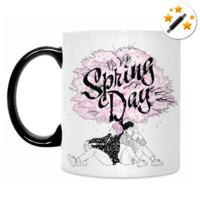 Кружка-хамелеон BTS - Spring Day