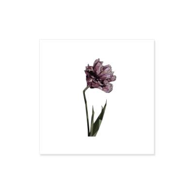 Виниловые наклейки Цветок