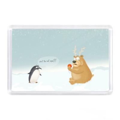Магнит Пингвин и медведь