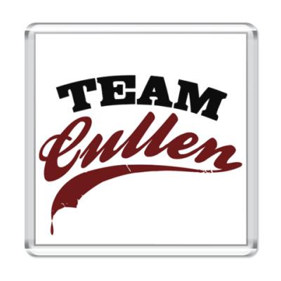 Магнит Team Cullen