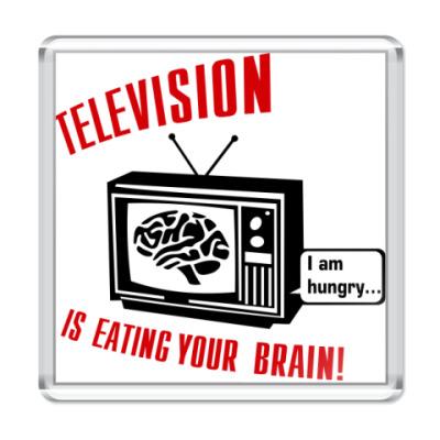 Магнит Телевидение ест мозг