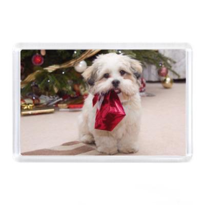 Магнит Собака с подарком
