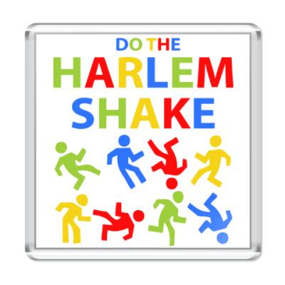 Магнит Harlem Shake