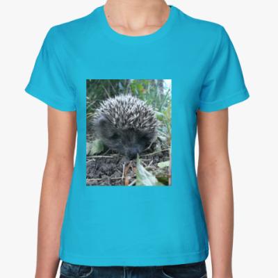 Женская футболка Ежик