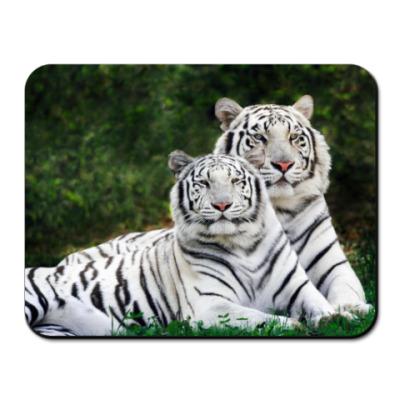 Коврик для мыши  Bengal Tiger