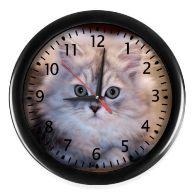 Настенные часы  Кот