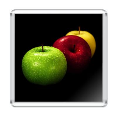Магнит : Яблоки