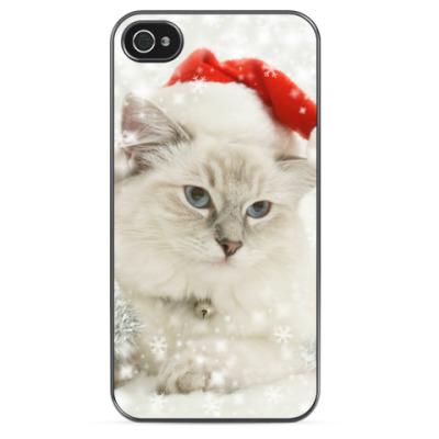 Чехол для iPhone Кот в шапке