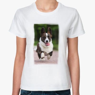 Классическая футболка   вельш корги