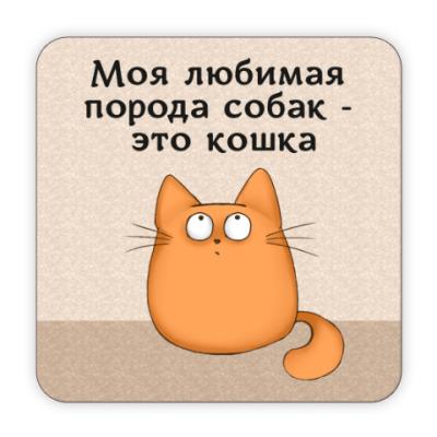 Костер (подставка под кружку) Обожатель кошек