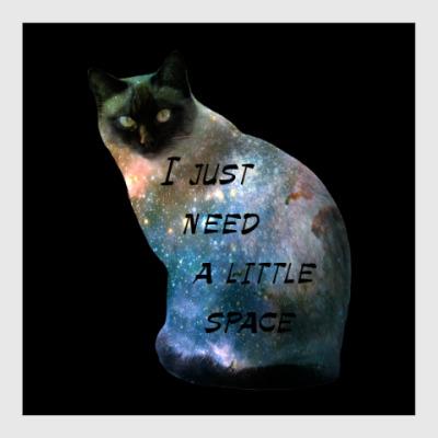 Постер Котик космический