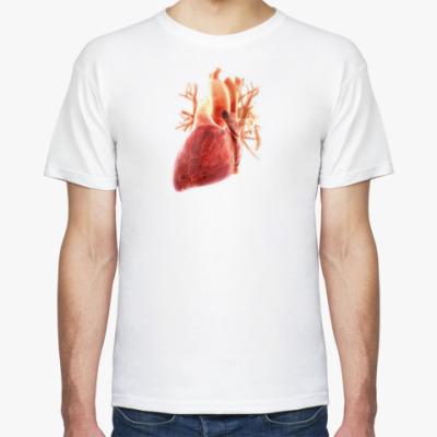 Футболка  Anatomy - сердце