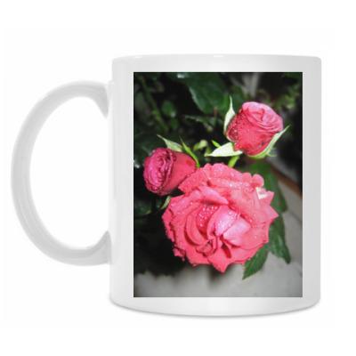 Кружка Розы
